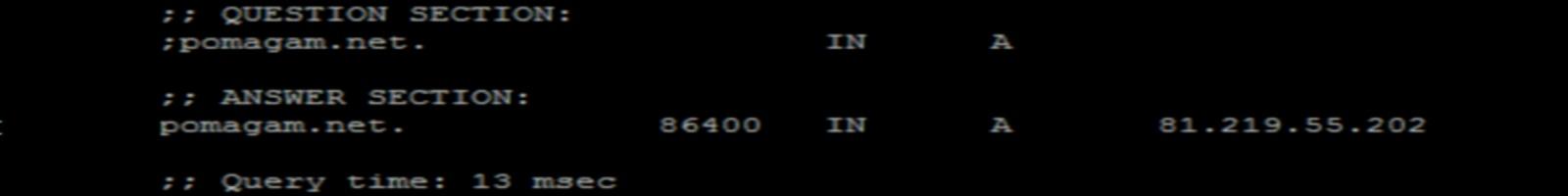 DNS Netia VPI VCI